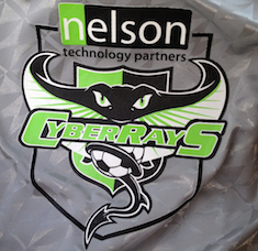 CyberRays Logo