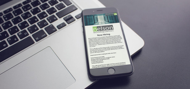 Nelson Tech is Hiring an IT Consultant
